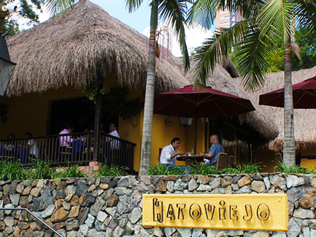hatoviejo-palmas.jpg